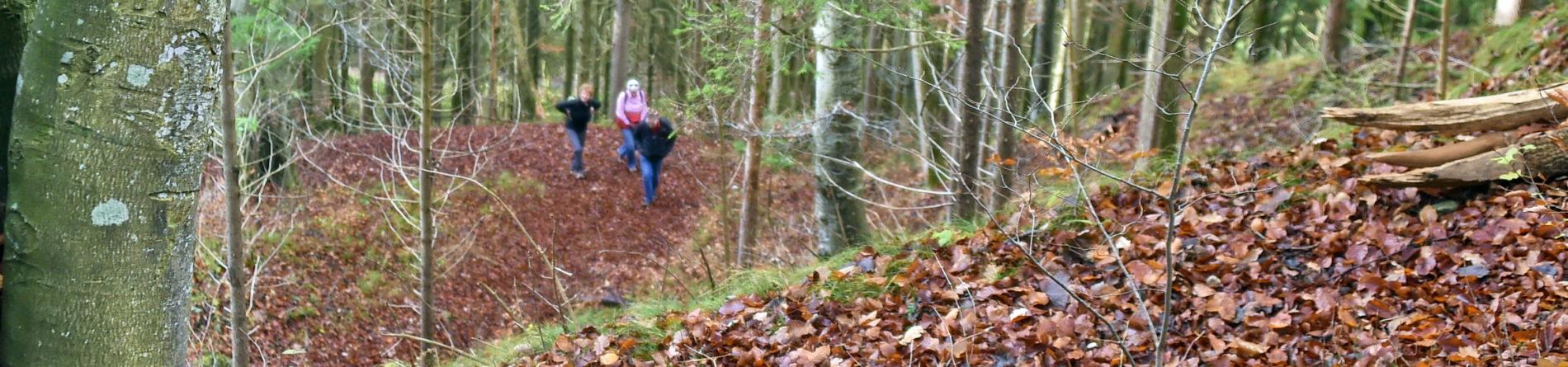 17. November 2018 – Herbstwanderung mit Dagmar